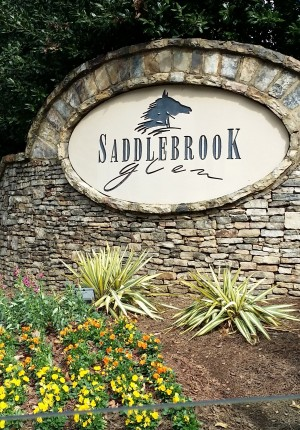Saddlebrook Glen Cumming Georgia 30041